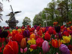2017年 ゴールデンウィークはヨーロッパ オランダ キューケンホフ公園と帰国編