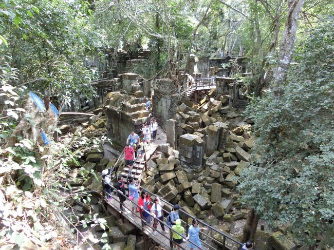春節を利用してやって来たカンボジアの旅もいよいよ終盤。<br />実質的なカンボジア最終日となる4日目は、手つかずの遺跡が残るベンメリアへ向かった。<br /><br />アンコールワットやアンコールトムと比べるとあまり知名度の低いベンメリアだが、行ったことのある友人たちはみな「ラピュタみたいだった」「絶対に行くべき」と言っており、自分もカンボジアに来た際は必ず行こうと心に決めていた。<br /><br />実際に足を運んでみた感想は「本当にラピュタだ」。<br />崩れかかった壁石、そしてそれを包み込むように伸びた樹木は本当に神秘的であった。<br /><br />また、ベンメリアに行く前に、カンボジアにいる先輩の紹介で日本の寄付金で設立された小学校も訪問した。<br />数十人の生徒たちとサッカーをやったり、実際に算数の授業に参加してみたりと、子供たちと楽しく交流をしてきた。<br /><br />今振り返ってみてもカンボジアでは楽しい思い出ばかり。<br />料理もおいしく人も優しい。<br />また来よう!と心に誓って中国に戻っていきました。<br /><br />カンボジア編終わり