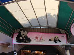 パンダに会いに白浜へ  その2