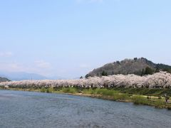 GW旅:桜編