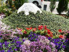 春爛漫の優雅な横浜♪ Vol34 ☆日本大通り♪ 各県ブースの花園は可愛らしい♪