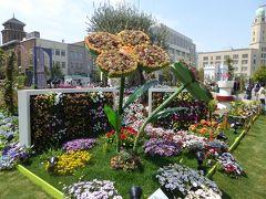 春爛漫の優雅な横浜♪ Vol35 ☆象の鼻のパーク♪ 美しいシンボルガーデン「ガーデンベアの庭」♪