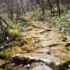 中山道最大の難所 和田峠は長く険しかった  中山道ウォーク10回目 大門~和田峠~下諏訪 30km