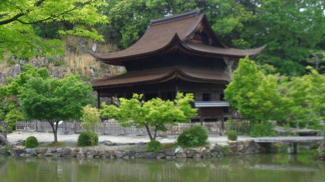 岐阜県多治見市は 愛知県瀬戸市に隣接した美濃焼の産地で、関連する美術館などもあるが、生産地よりも商社など集積地の性格が強いと言われる。<br />名古屋に30分と言う交通の便から、名古屋のベッドタウンとなっている。<br />盆地状の地形のせいか、国内の最高気温を記録したこともあり「日本一暑い町」の一つでもある。<br /><br />「五木寛之の百寺巡礼」第4巻という本に触発され、湖東三山を訪れた帰りに、半日を割いて名古屋から往復して永保寺を訪ねました。<br />永保寺は臨済宗南禅寺派の寺で、雲水の修業道場でもある。<br /><br /> 南禅寺9世の無窓疎石が開創、11世の元翁本元が開山とされているが、1295年頃には両者がともに鎌倉で修業しており、元翁の故郷に近いこの地に1314年頃に戻ったのが始まりと見られている。<br /><br />境内には国宝の観音堂、開山堂、国名勝の庭園がある。観音堂の内部の拝観は涅槃会の3月15日だけ無料で公開される。<br />修業道場ゆえ建物の内部は立ち入れないが、庭園の拝観、通り抜けは自由で無料である。、<br /><br />帰りに、駅の案内所で完熟トマトを買いました。昔のトマトの味がしました。
