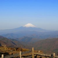 原点回帰の山旅 丹沢 -新緑と山桜と富士山- 2