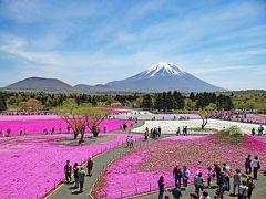 花の河口湖 2017富士芝桜まつり