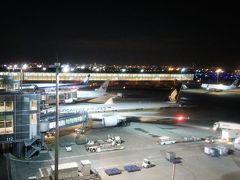 2017GWシンガポール&ビンタン #2 羽田深夜JAL便でシンガポールへ チャンギ空港探検