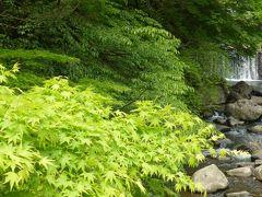 GW、新緑の湯河原 2 瀑下で野天温泉と朝市