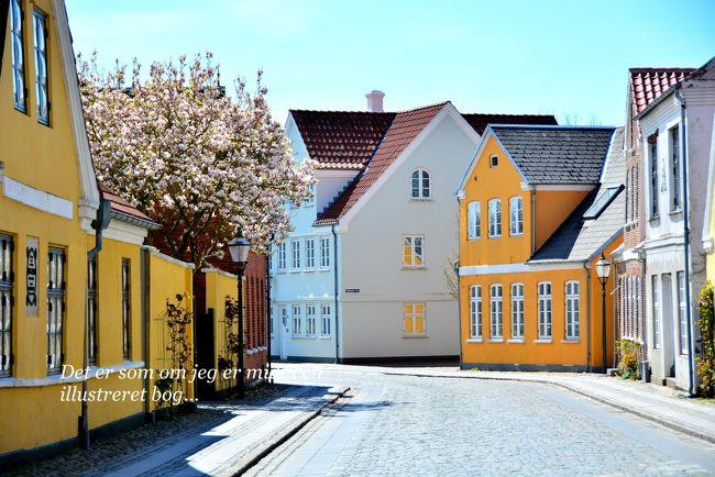 待ちに待った恒例GWのヨーロッパ♪<br />今年はちょっと短い日程になってしまったけど、旅に出られるだけ幸せと思って楽しんできた。<br />時間を有効に使うためにも直行便で行ける都市で選んだ行き先はデンマーク・コペンハーゲン!でも、せっかくならコペンハーゲンじゃないエリアにも行ってみよう~と、かつてから行きたかったオーデンセやデンマーク版ガストロノミーなどへもエクスカーションしてきた。<br /><br />世界的に有名な童話作家のアンデルセンを生んだ国は、お伽の世界を今も残しつつ、グッドデザインが溢れる街に水辺が多く交差し、カラフルで端正な顔を楽しませてくれた。<br /><br />昨年夏に初めて北欧・スウェーデンを旅して物価の高さにはびっくりしたけど、デンマークも同様だった。まぁ余生は守られているのだろうから、ある意味羨ましいとさえ思うけど。<br /><br />さぁ弾丸4泊6日、いつものように歩き倒すよ~<br />ほぼお天気にも恵まれて、プチハプニングはあったものの、こうして無事に行って帰ってきて、旅行記を書けることには心から感謝したいと思う。旅のことばかり考えてる親不孝者な私だったけど、亡き母が見守っていてくれているのかな?<br /><br />5月2日(Tue) Copenhagen/Villa Armonia Guest Rooms泊<br />Narita→Copenhagen by Air(SAS)<br /><br />5月3日(Wed) Copenhagen/Villa Armonia Guest Rooms泊<br />コペンハーゲン街歩き<br /><br />5月4日(Thu) Tonder/Schackenborg Slotskro泊<br />Copenhagen→Ribe by Train<br />リーベ街歩き<br />Ribe→Tonder by Train<br />トゥナー街歩き<br /><br />5月5日(Fri) Copenhagen/Villa Armonia Guest Rooms泊<br />Tonder→ by Bus→Odense by Train<br />オーデンセ街歩き<br /><br />5月6日(Sat) 帰国の途<br />昼過ぎまでコペンハーゲン街歩き<br />Copenhagen→Narita by Air(SAS)<br /><br />5月7日(Sun) 帰国<br /><br />1DKK=約17円(キャッシュは現地ATMでデビットカードから引き出した)<br />一応4日間分2人で1500DKK(約25000円)程キャッシュを引き出したが、タクシーと公共トイレ以外はほぼクレカで支払いが可能だった。<br /><br />※Aの上にちっこい〇とか、団子に串刺しになったようなO/とか、AとEがくっついたような文字とか、正しいデンマーク語表記は文字化けするので省略していることをご了承下さいませ( ;∀;)<br /><br />Copenhagen編(前編):http://4travel.jp/travelogue/11239967<br />Copenhagen編(後編):http://4travel.jp/travelogue/11249780<br />Ribe編:http://4travel.jp/travelogue/11242435<br />Tonder編:http://4travel.jp/travelogue/11243020<br />Odense編:http://4travel.jp/travelogue/11249443