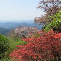 がっつり歩くよ里山 関八州見晴台~日和田山