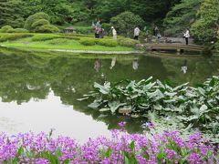 初夏の皇居・東御苑を訪問する①大手門~二の丸庭園