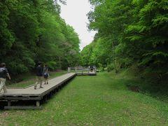 2017春、神奈川と千葉の寺社巡り(14/14):5月6日(7):濃溝の滝から海ほたる経由名古屋へ
