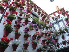 情熱のアンダルシア「祭り」を巡る旅(3)  パティオ祭りに沸き、街中が花にあふれる「コルドバ」