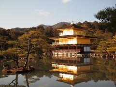 冬の京都ひとり旅【3】一日目・43年ぶりの金閣寺、わら天神、真冬に桜が咲く平野神社