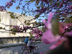 春の優雅なアブルッツォ州/モリーゼ州 古城と美しき村巡りの旅♪ Vol95(第4日) ☆L'Aquila:ラクイラの美しい古城「Forte Spagnolo」(ラクイラ城)を眺めて♪