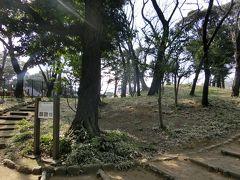 飛鳥山遺跡