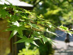 2017年5月 緑溢れる幻想的な京都日帰り旅(後編)~「蓮華寺」~「曼殊院門跡」~「詩仙堂」~「一乗寺中谷」~