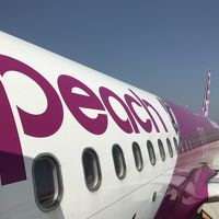 Peach Aviation(ピーチ)で台湾旅行GW(関空→高雄/台北→羽田)