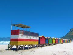 レンタカーでケープタウンの見所巡り(ミューゼンバーグ・ボルダーズビーチ・ケープポイント・喜望峰など)  南アフリカ・ザンビア・ジンバブエ4