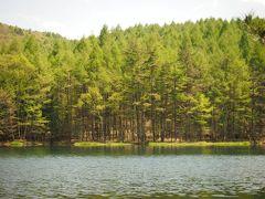 日帰りでさっくりと森林浴(御射鹿池など)