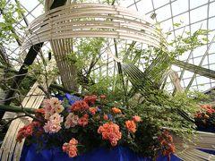 バラだけではない花の祭典・国際バラとガーデニングショウ2017(1)ウェルカムガーデンやバラのタイムトンネルから意外に面白かった世界最大のバラのいけばなや志穂美悦子さんの花空間なまで特別展示をじっくりゆっくりほぼ網羅