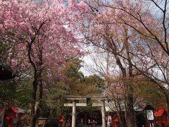 秩父に行く前に冠稲荷神社に少し寄って参拝してきました
