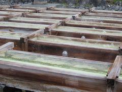 2017春、長野、群馬と栃木の名所巡り(6/26):4月25日(6):草津温泉(2):湯畑、草津を訪問した著名人、草津山・光泉寺、仁王像