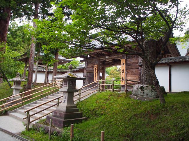 5月27日から29日まで2泊3日で宮城・岩手・山形と東北3県、駆け足で巡ってきました。日本三景の松島、世界遺産の中尊寺・毛越寺、日本百名山の蔵王と行ってきました。レンタカーで460キロ位走りました。疲れましたけど楽しい良好でした。