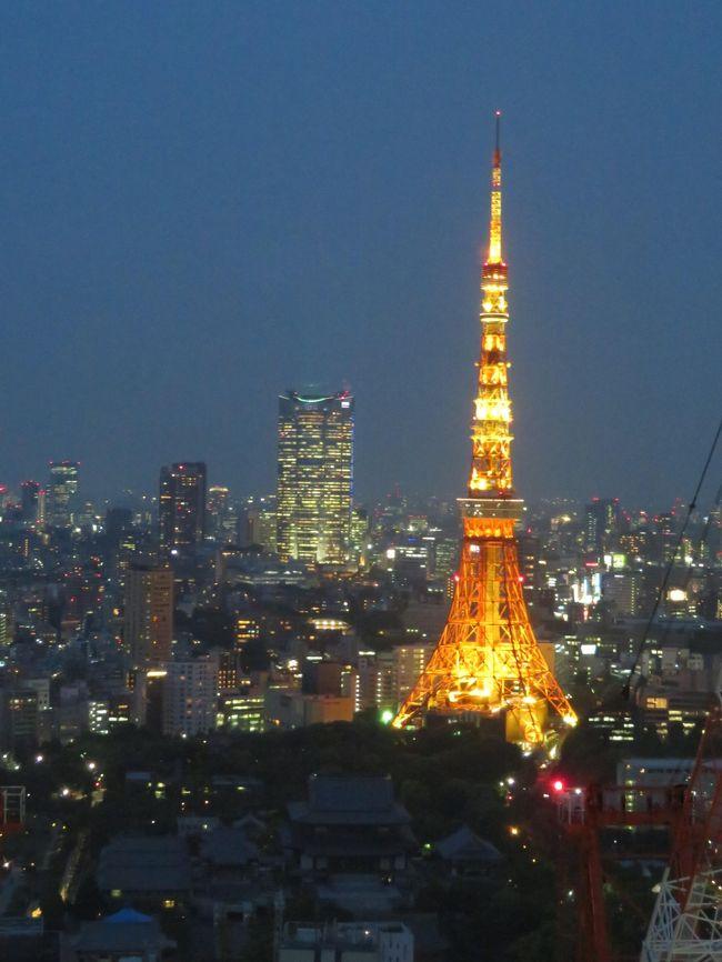 羽田空港からの東京モノレールが到着する浜松町の世界貿易センタービルの最上階には、展望台「シーサイド・トップ」があります。東京タワーや東京スカイツリー、六本木ヒルズに比べれば、地味な展望台ですが、ローケーションがよく、2大鉄塔のほか、湾岸エリアがよく見えます。「鉄」の聖地でもあり、意外な発見があります。