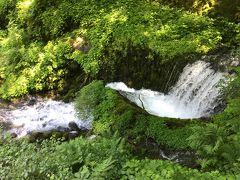 箱島湧水~小野上温泉 わくわく