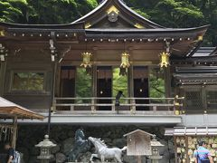 青もみじを楽しむ初夏の京都 2日目 鞍馬・貴船・下賀茂神社・東寺