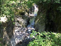 新緑の耶馬溪