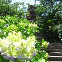 あじさいはまだ早かった…! 松戸の本土寺と戸定邸へ行ってきました