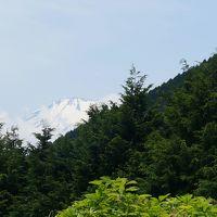 面白い名前の「シダンゴ山」ハイキングと松田山ハーブガーデンのハーブフェスティバル♪