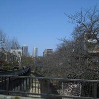 東中野から新宿まで歩いてみた
