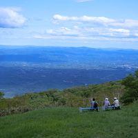 週末、ゴヨウツツジ咲く那須高原へ