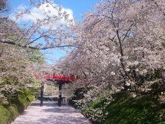 2017 GW9日間東北旅行4日目~弘前城の桜~