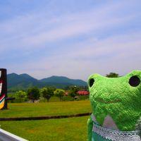 楽しくて美味しい鳥取カエル旅 3