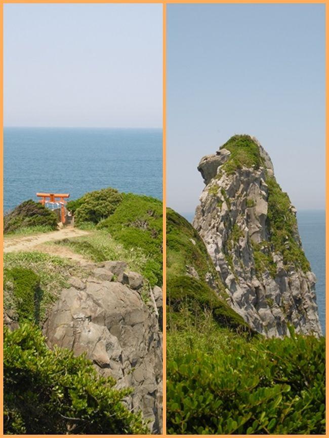 2日目は、唐津東港からフェリーで1時間45分かけて、壱岐に向かった。<br />唐津から約70キロほどの距離だ。 さらに70キロ北西に行くと「対馬」がある。<br />その向こうは、もう朝鮮半島だ。<br />佐賀県唐津から壱岐に向かったが、壱岐は「長崎県」に所属する。<br /><br />壱岐と言えば、中国の歴史書「魏志倭人伝」に「一支国(いきこく)」と書かれており、個人的には「歴史の教科書に出てくる国」というイメージしかなかった。<br />壱岐の存在に具体性が感じられず、そこで人が生活し、日本語で話しているということが信じられないような、遠い地であった。<br /><br />大陸の文化は、対馬・壱岐を経由して伝わったということを学習したが、それは、ぼんやりとした霧の向こうの出来事に過ぎなかった。<br /><br />元寇(文永・弘安の役)で蒙古軍により二度にわたって壊滅的な打撃も受けた。その戦跡も残っているという。<br /><br />この旅に参加しようとした大きな理由は、「壱岐」という文字を見たからである。<br />壱岐は確かに存在した!<br />人々は日本語を話していた。<br />雲丹がおいしかった!<br />水田が在り、煙草の葉が栽培されていた。<br />神社が多く、長崎県の神社の約11%にあたる150社が、この壱岐にあるという。<br /><br />私たちが訪れたこの日の玄界灘は、穏やかだった。<br />まるで瀬戸内海のように静かな海。<br />海の色も澄んで美しかった。<br /><br />今思い出しても、夢のようである。<br /><br /><br />