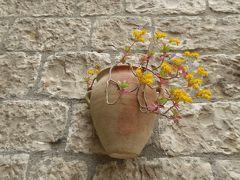 春の優雅なアブルッツォ州/モリーゼ州 古城と美しき村巡りの旅♪ Vol313(第11日) ☆Oratino:美しき村「オラティーノ」旧市街を優雅に歩いて♪