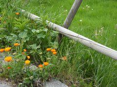春の優雅なアブルッツォ州/モリーゼ州 古城と美しき村巡りの旅♪ Vol317(第11日) ☆Oratinoからモリーゼ州都のCampobassoへ♪