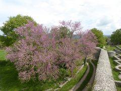 春の優雅なアブルッツォ州/モリーゼ州 古城と美しき村巡りの旅♪ Vol338(第12日) ☆Saepinum:古代ローマ遺跡の村「サエピヌム」美しい城門「Porta Benevento」ピンク花の木の競演♪