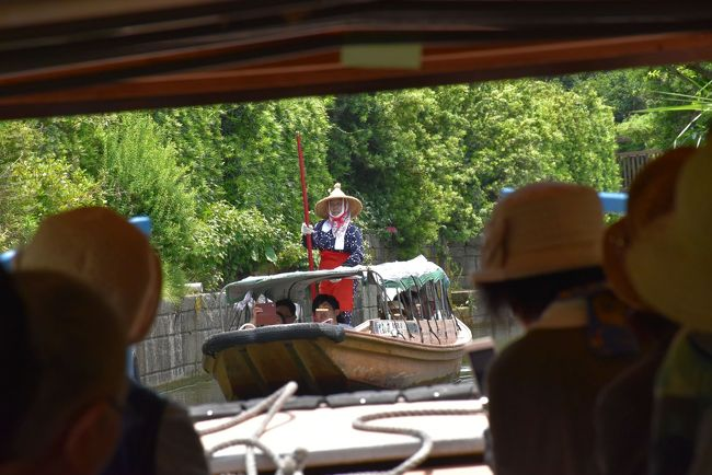 水郷(すいごう)は、千葉県と茨城県にまたがる利根川下流の低湿地帯のことです。<br /><br />特に加藤洲(かどうず)十二橋は利根川と常陸利根川にはさまれた広大な水田地帯の一角にあります。<br />この辺りは、かつて家と家、あるいは田んぼの間を、縦横に張り巡らされた水路をつたって舟で行き来していました。<br />中でも加藤洲の水路には、家と家を結ぶ一枚板の簡単な橋が12架かっていたので十二橋と呼ばれました。<br /><br />6月の今の時期、水郷潮来(いたこ)あやめ園や水郷佐原(さわら)あやめパークでは花菖蒲が見頃になり、あやめ祭りが開催されています。<br />今日は、サッパ舟で加藤洲十二橋とあやめ祭り(花菖蒲)を訪れます。<br /><br />旅行記は香取市観光HP、水郷潮来・水郷佐原観光協会の資料などを参考にしました。<br />