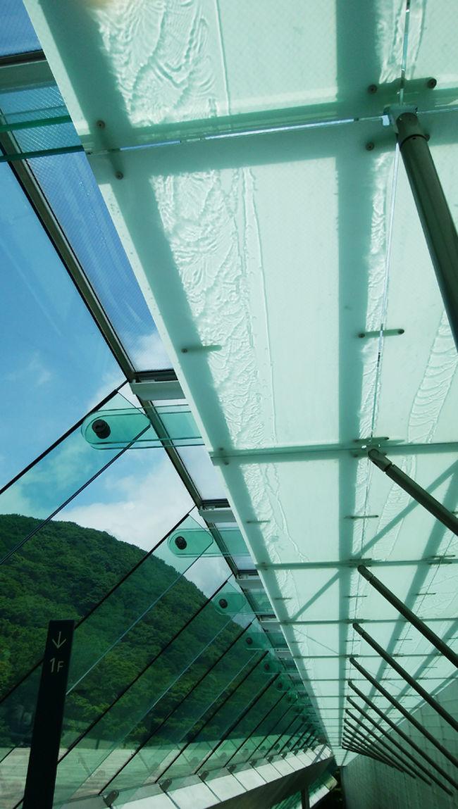 このポーラ美術館も初めて来たところです。この建物に興味があったので、外観や内部をくまなく見て来ました。箱根の環境に適した地上8mの建物は、地上2階、地下3階になっています。地下3階に全体の建物模型が置いてありました。<br />設計は、日建設計の安田幸一氏で、2003年の村野藤吾賞、2004年に日本建築学会賞を受賞されています。施工は、竹中。1994年12月~1999年10月まで設計、工事は2000年4月~2002年5月に及んでいます。敷地面積56572,24平方m、建築面積3389,04平方m。富士箱根伊豆国立公園内のため、自然公園方で定められた建物の高さを8mに抑えられています。<br />食後に、「風に遊ぶ散歩道」と名付けられた遊歩道を歩き、ブナ、ヒメシャラ、カジカエデ、アカシア、ヤマボウシ、ミズナラや珍しいイヌブナの林に置かれた彫刻を見ながら、心地良い時間を過ごしました。ヒメシャラの白い花はまだ咲いていませんでしたが、もうすぐでしょうね。