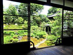 初夏の京都を歩く *女子旅・特別公開庭園巡り 後編*