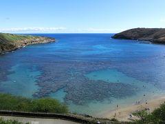 ハワイの休日・の~んびり23日間 地元ツアーのバンに乗って、「ハナウマ湾(Hanauma Bay)」をホロホロ散歩。(2017)