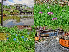 京都6月の花めぐり絵日記 ~ 平安神宮&祇園白川 ~