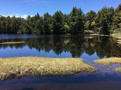 2017年06月 志賀高原の志賀山、四十八池を歩いてきました。