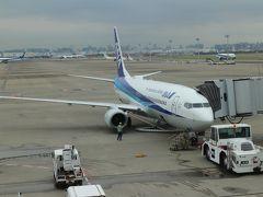 NH315便、羽田→富山搭乗メモ。天皇皇后両陛下が搭乗された機材、富山ご当地プレーン。
