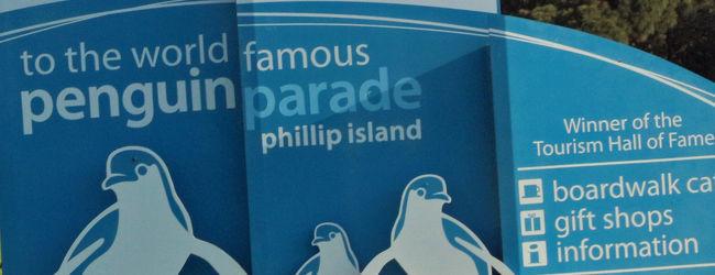 こんなところにペンギン フィリップ島 /...